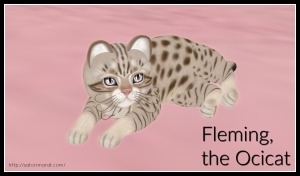 Fleming Pic for Blog