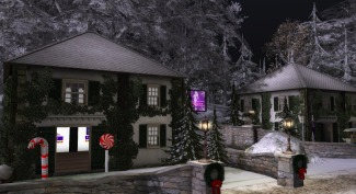 sl-christmas-expo-preview-night-shopping